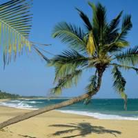 Sri Lanka: Kadju House, Tangalle