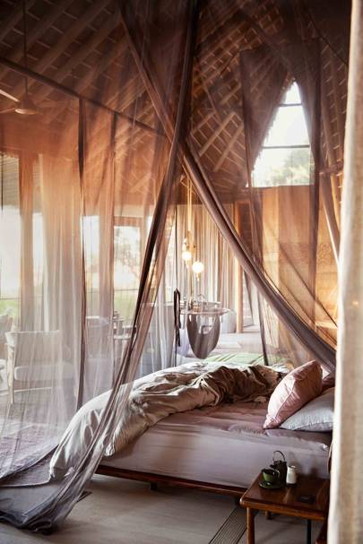 12. Be the first to read about Botswana's smartest and most sustainably focused new safari camps