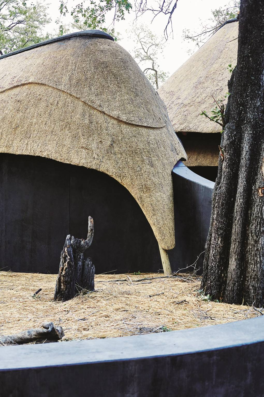 Botswana safari holidays in the Okavango Delta   Africa   CN Traveller