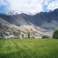 Himalayan householders