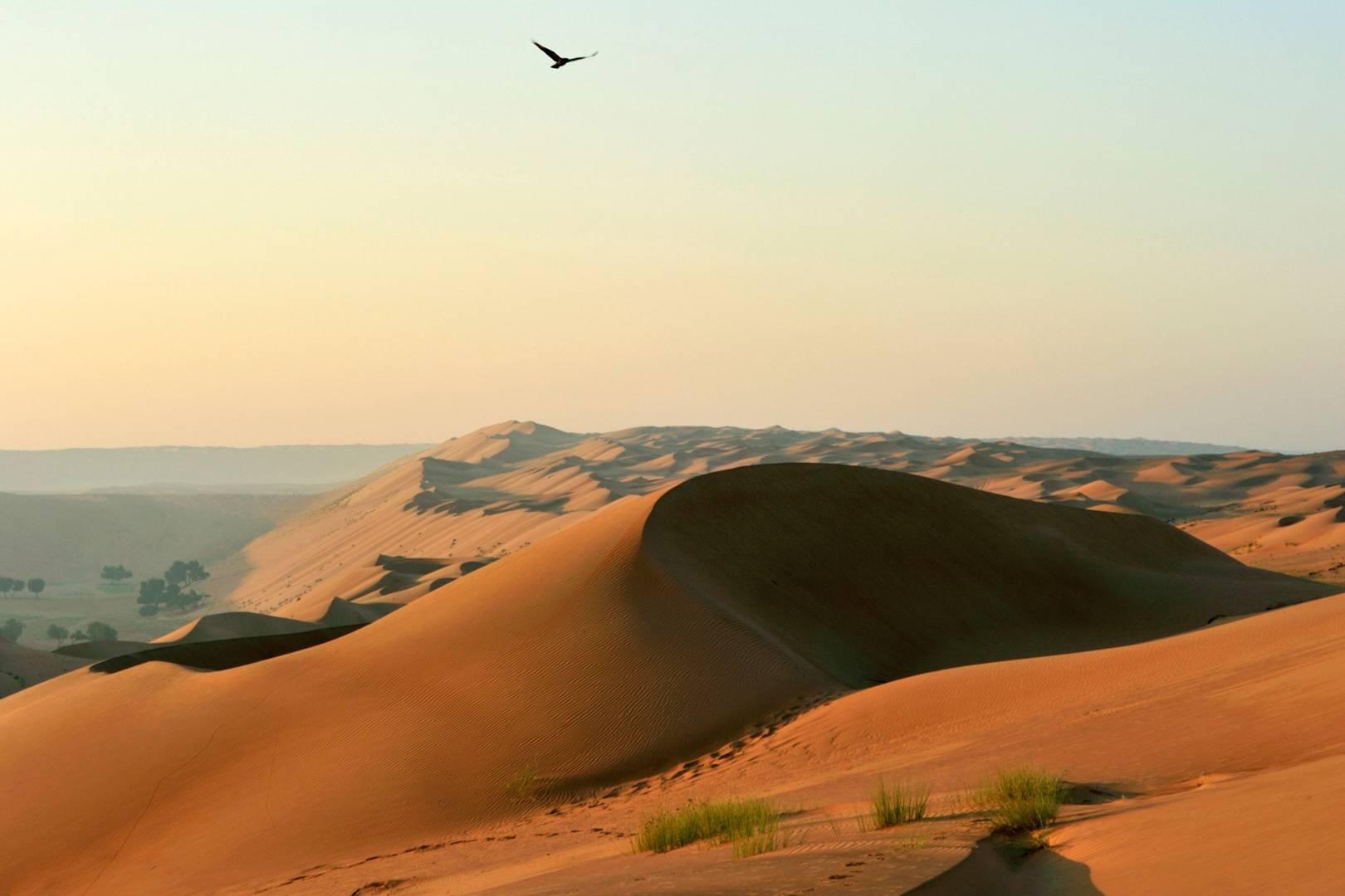 Oman travel guide | CN Traveller