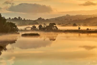 Dominic West – County Limerick, Ireland