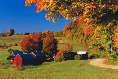 Vermont: Jenne Farm, Reading