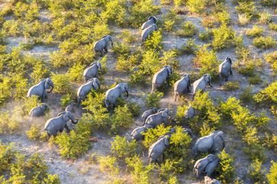 11. Botswana