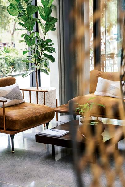 Save up 20% at eco-hotel Treeline Urban in Siem Reap