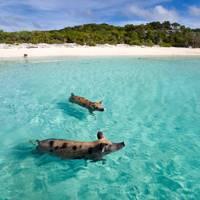 6. Bahamas, Caribbean