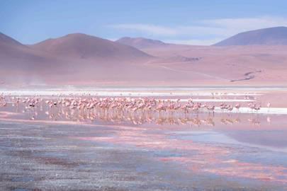 2. BOLIVIA, SOUTH AMERICA