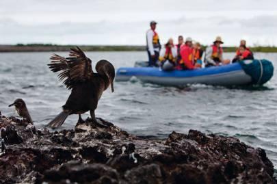 Galápagos Marine Reserve