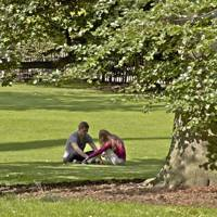 What to see in Chester
