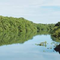 River at Fazenda da Lagoa