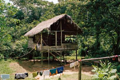 Living in the Amazon