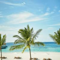Voavah, Maldives