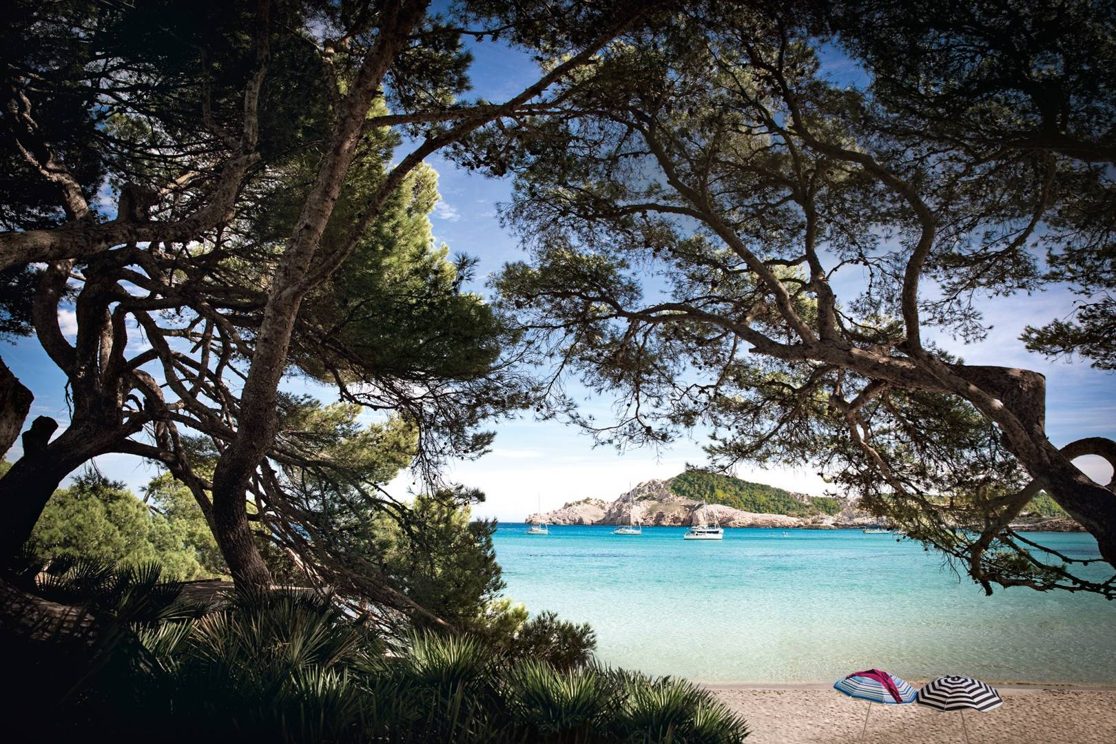 Mallorca North East Coast   Guide To The Best Beaches, Restaurants And  Hotels | Spain | CN Traveller