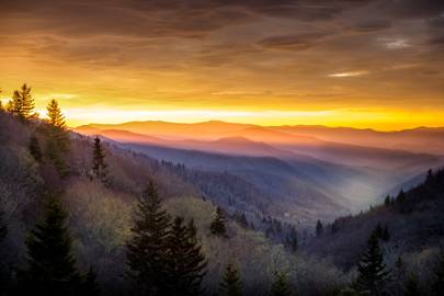Tennessee: Great Smoky Mountains National Park