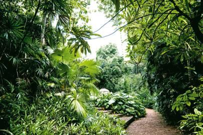 Gardens of Sri Lanka