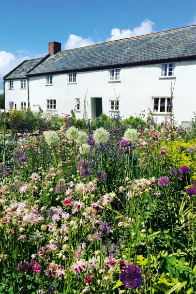 River Cottage, Devon