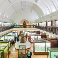 HORNIMAN MUSEUM, FOREST HILL