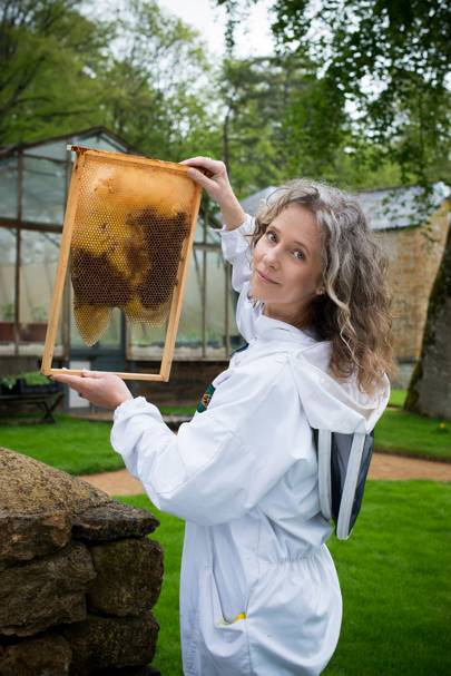 Bee keeping at The Newt, Somerset