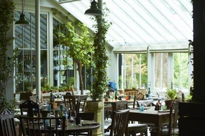 5. The Pig, New Forest