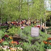 13. The community garden – Dalston Eastern Curve Garden, Dalston