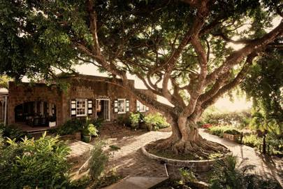 8. Montpelier Plantation & Beach, Nevis, West Indies