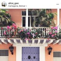 @alice_gao