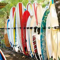 Surfing: the reason to come to Máncora