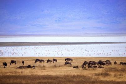 16. Tanzania