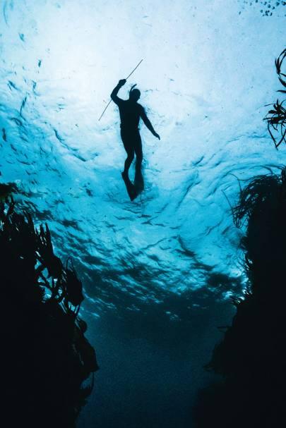Shetland Underwater photo print Scotland.
