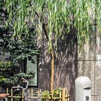 7. Neighbourhood watch in Tokyo and Mumbai