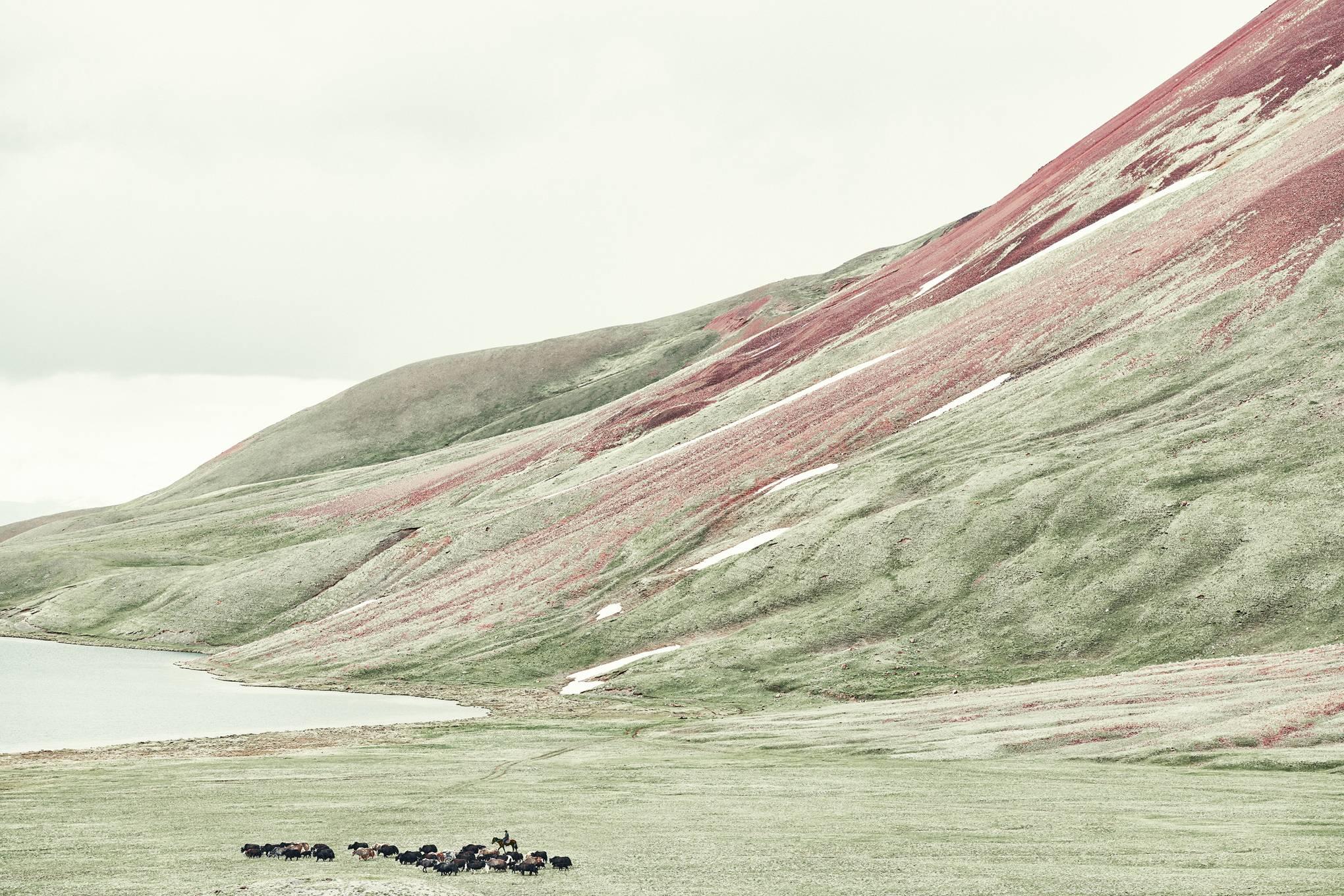 Inside the lives of Kyrgyzstan's nomadic herders