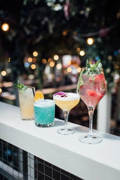 4. Drink cocktails and plant trees