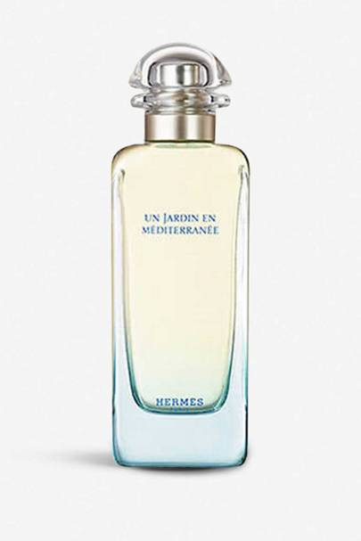 The transportive fragrance