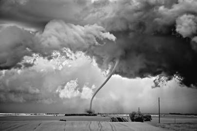 The storm chaser