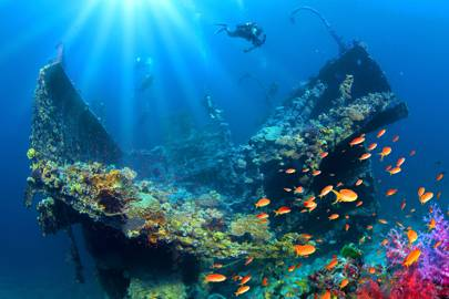 3. Dive in the unexplored Red Sea