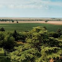 Wine estates of Maremma