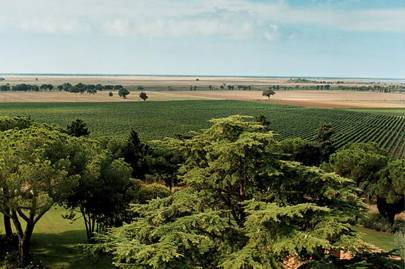 Wine estates of Maremma