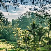 1. Bali's Ubud might be crowded but it still retains its green heart
