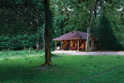 Rubondo Island Camp, Tanzania