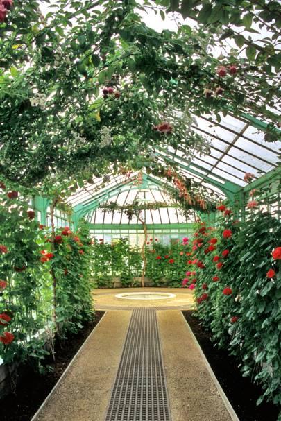 5. Visit the Royal Greenhouses of Laeken