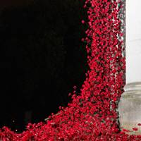Ongoing: POPPY INSTALLATION AT THE IMPERIAL WAR MUSEUM