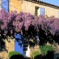 La Maison Bleue at La Maison du Paradou, Provence, France