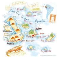 Galápagos Islands Travel Information