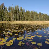 Minnesota: Boundary Waters Canoe Area Wilderness