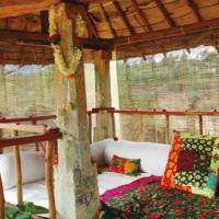 Shreyas Yoga Retreat, India