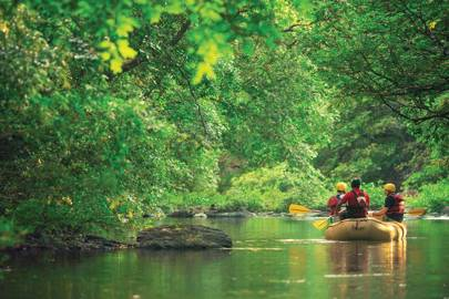 Experience White Water Rafting In Costa Rica