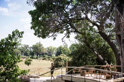 Wilderness Mombo Camp, Botswana
