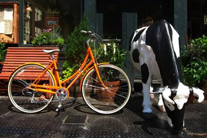 See New York by bicycle