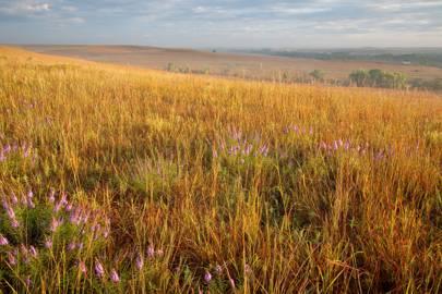 Kansas: Tallgrass Prairie National Preserve, Flint Hills