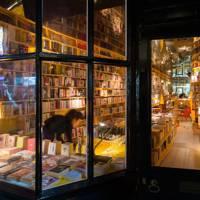 7. Libreria